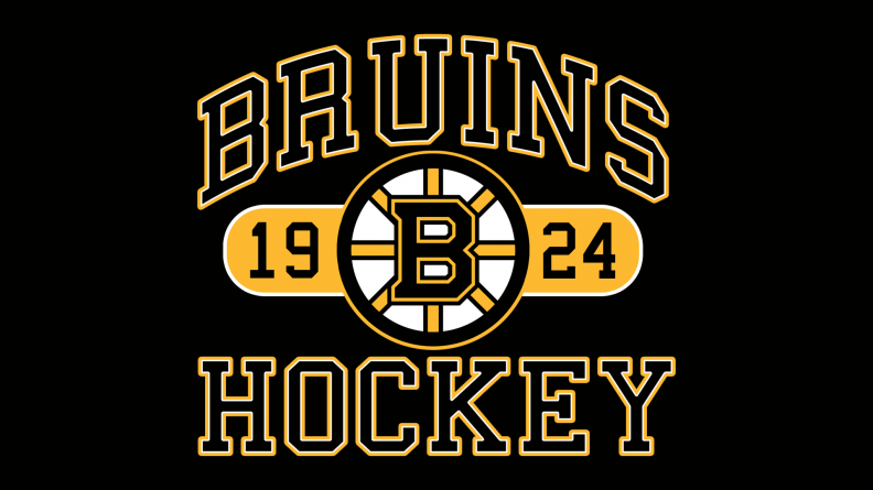 bruins_hockey_by_bruins4life[1].png