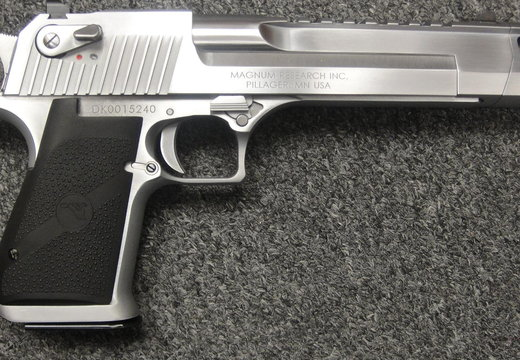 DEsert Eagle 2nd Ammendment