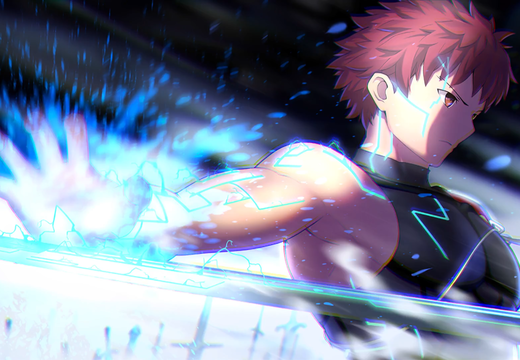 Shirou Emiya Trace On, Fate